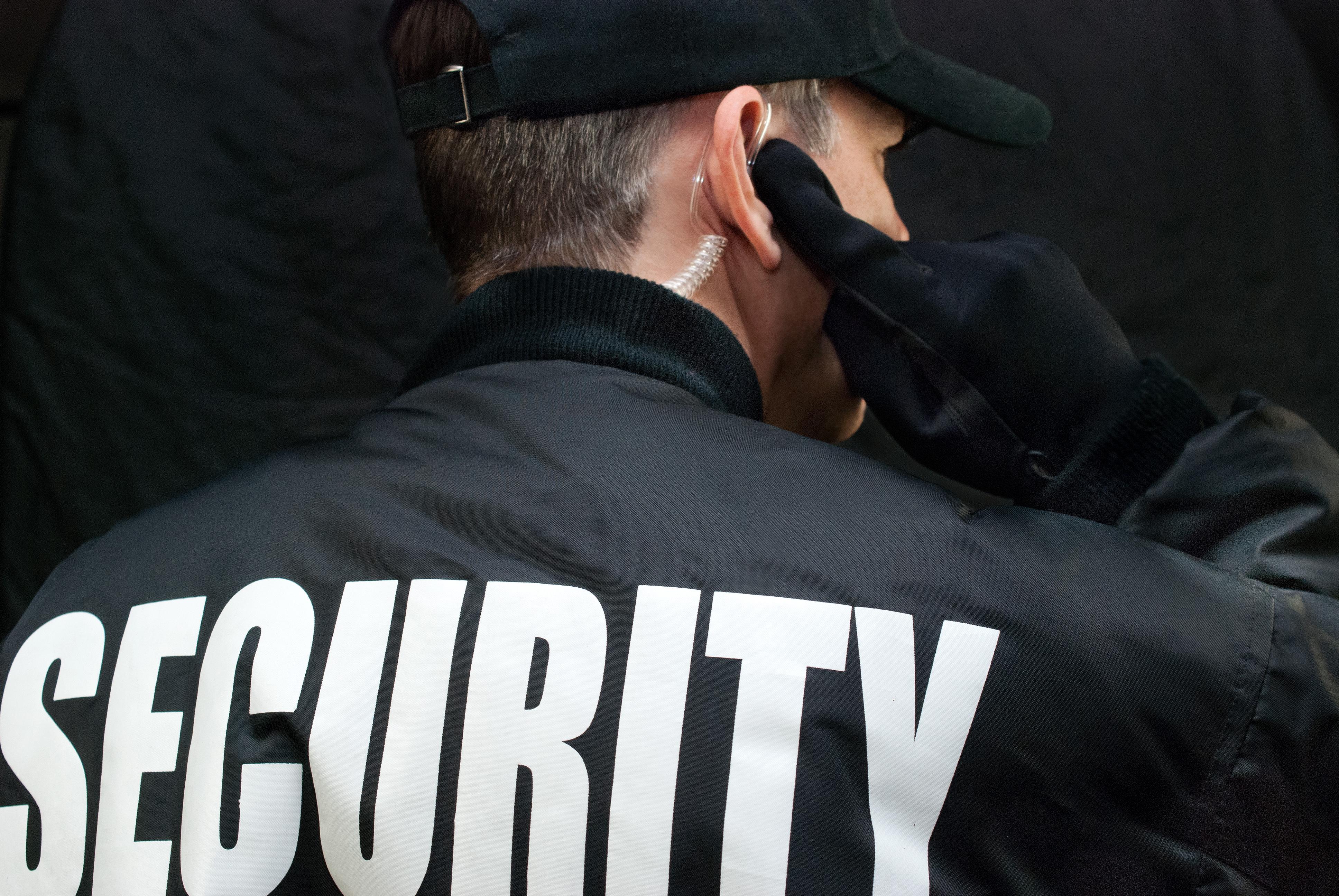 Executive Security - Delta Protective Services